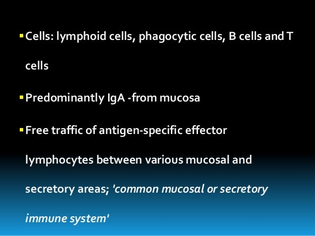 Structure And Functions Of The Immune System