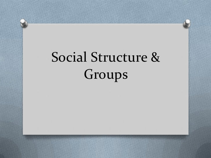 Social Structure & Groups<br />