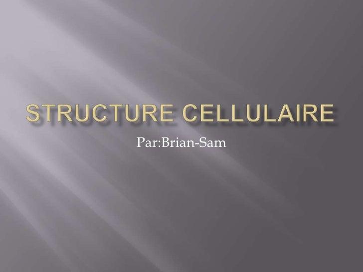 Structure Cellulaire<br />Par:Brian-Sam<br />