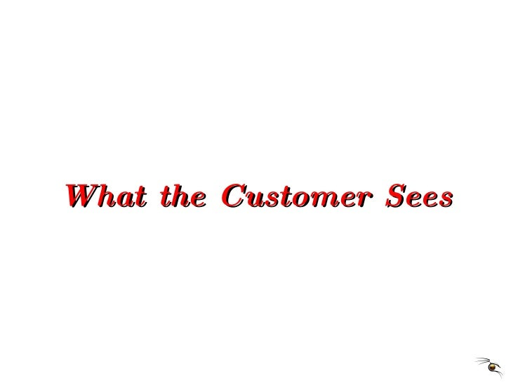 What the Customer Sees