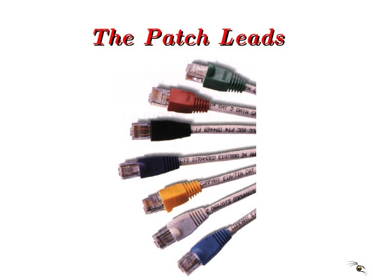 The Patch Leads