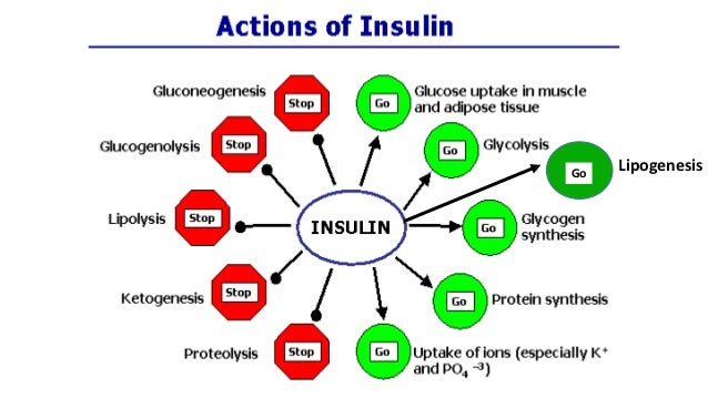 Structure& function of insulin,glucagon By Dr. Ashok KUmar Jeppu