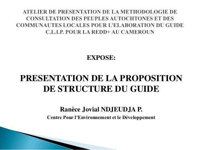 EXPOSE:  PRESENTATION DE LA PROPOSITION DE STRUCTURE DU GUIDE Ranèce Jovial NDJEUDJA P. Centre Pour l'Environnement et le ...