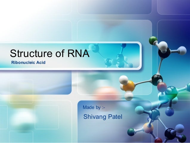 Structure of RNA Made by :- Ribonucleic Acid Shivang Patel 1