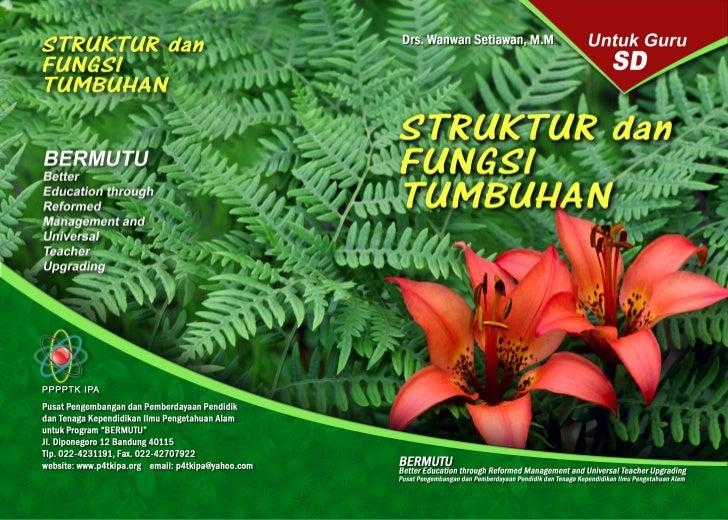Drs. Wanwan Setiawan, M.M           STRUKTUR DAN             FUNGSI          TUMBUHAN                                     ...