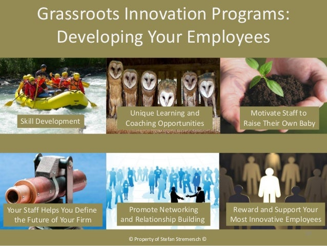 Grassroots Innovation Programs:           Developing Your Employees                                Unique Learning and    ...