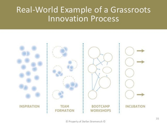 Real-World Example of a Grassroots       Innovation Process                                                35            ©...