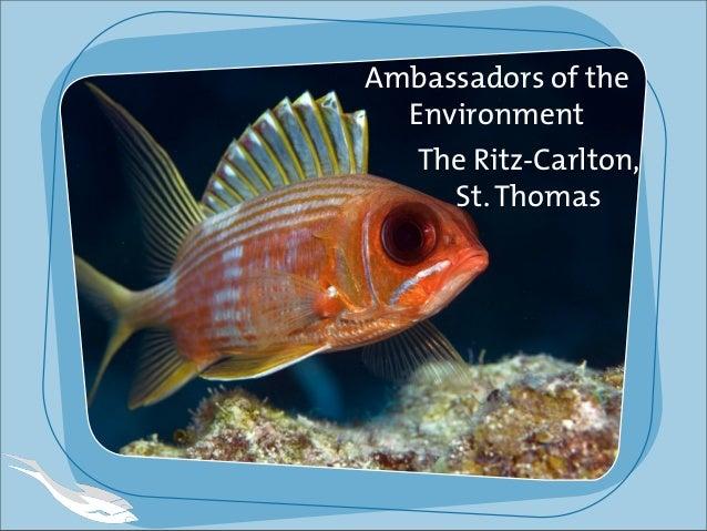 Ambassadors of the Environment The Ritz-Carlton, St.Thomas