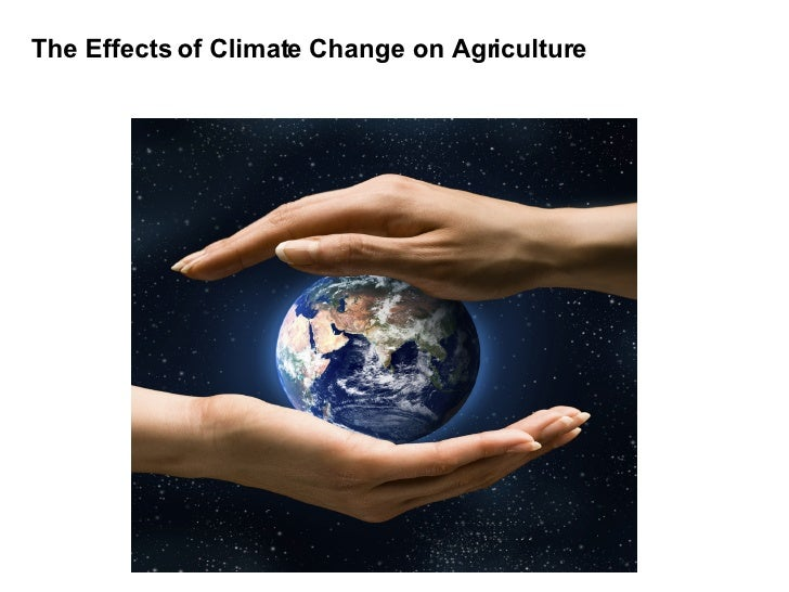 The Effects of Climate Change on Agriculture