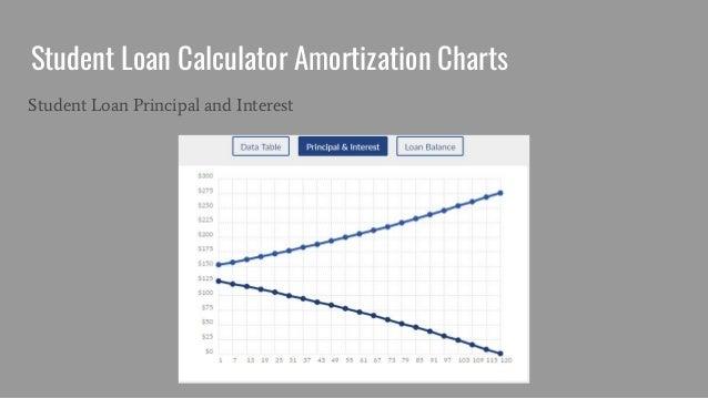 student loan calculator amortization