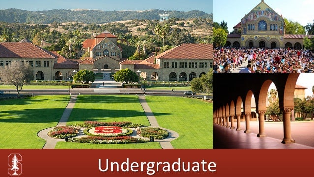 """stanford roommate essay college confidential Bottom line most people don't know that the college admissions  to your future  roommate"""" essay question, eg, """"virtually all of stanford's."""