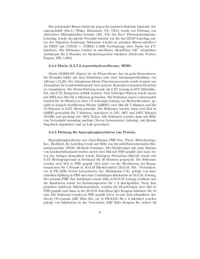 Ein polykonaler Hasen-Antibody gegen das ionisierte Kalzium bindende Ad-aptermolek¨l (Iba-1) (Wako, Richmond, VA, USA) wur...