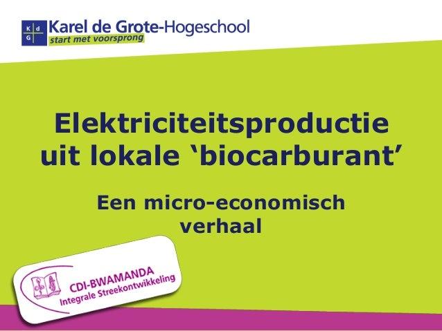 Elektriciteitsproductieuit lokale 'biocarburant'Een micro-economischverhaal