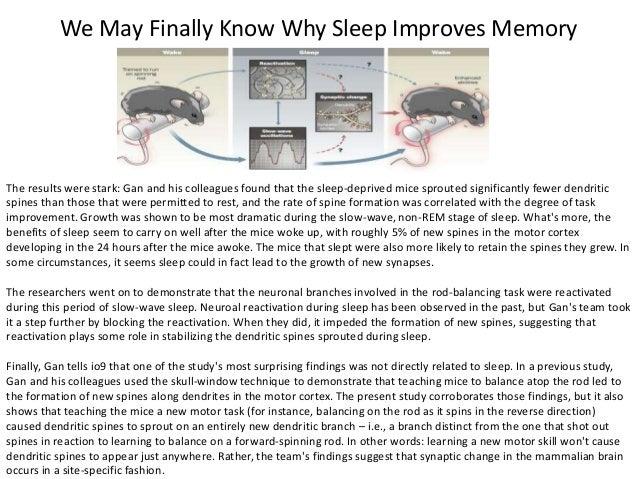 Hunger of Memory Summary