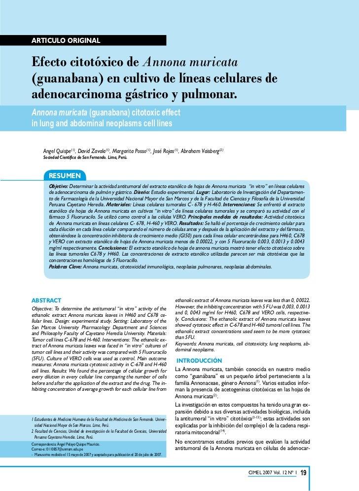 Articulo originalEfecto citotóxico de Annona muricata(guanabana) en cultivo de líneas celulares deadenocarcinoma gástrico ...