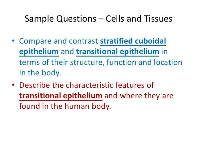 compare and contrast connective tissues Connective tissue supports and binds other tissues of the body even though it has a different function in comparison to other connective tissues.