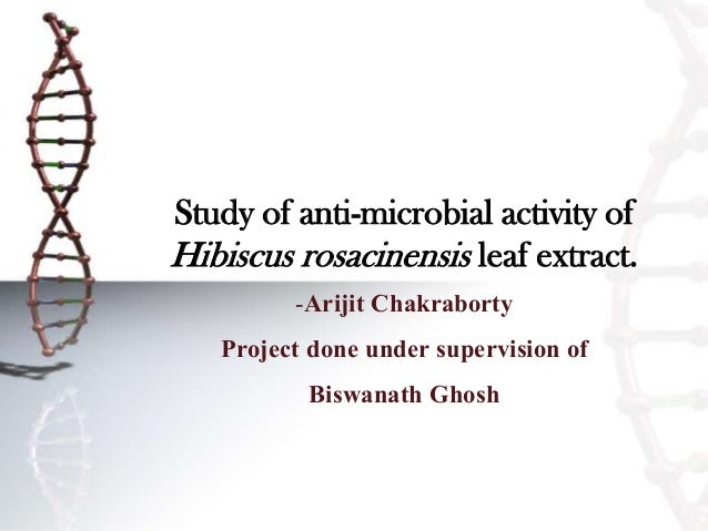 Study of anti-microbial activity of Hibiscus rosacinensis leaf extract. -Arijit Chakraborty Project done under supervision...