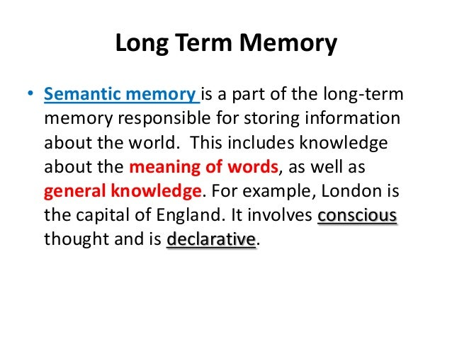 Study Of Memory In Psychology