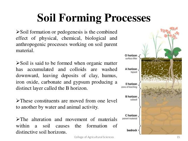 study on conversion of sand to soil organically
