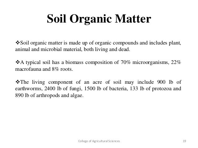 Study on conversion of sand to soil organically for What is soil composed of