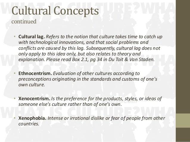 concept of cultural lag