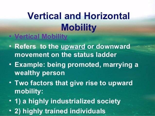 Vertical and Horizontal Mobility • Vertical Mobility • Downward movement refers to the loss of a job or when people do the...