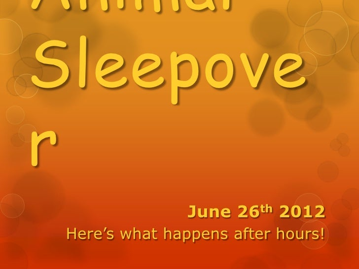 AnimalSleepover                June 26th 2012 Here's what happens after hours!