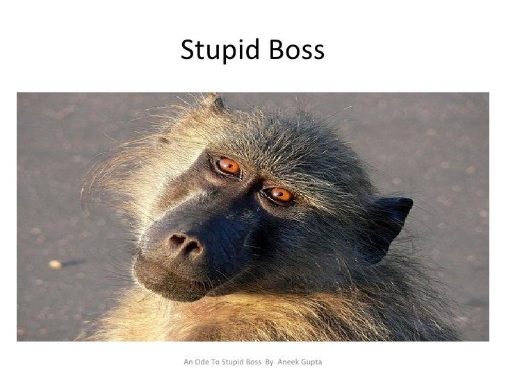 Stupid Boss An Ode To Stupid Boss  By  Aneek Gupta