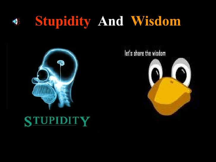 Stupidity   And   Wisdom