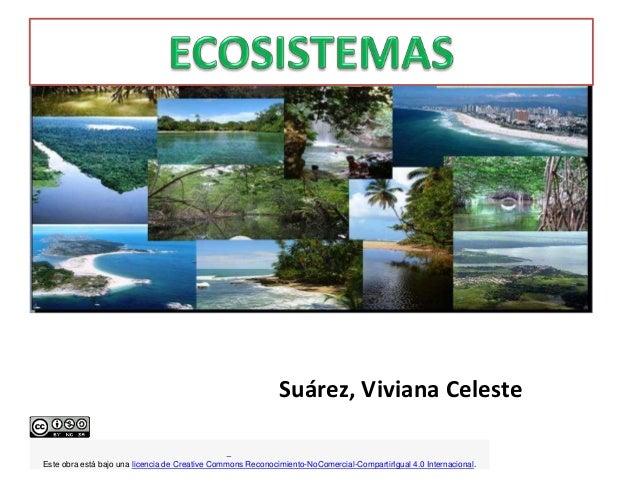 Suárez, Viviana Celeste Este obra está bajo una licencia de Creative Commons Reconocimiento-NoComercial-CompartirIgual 4.0...