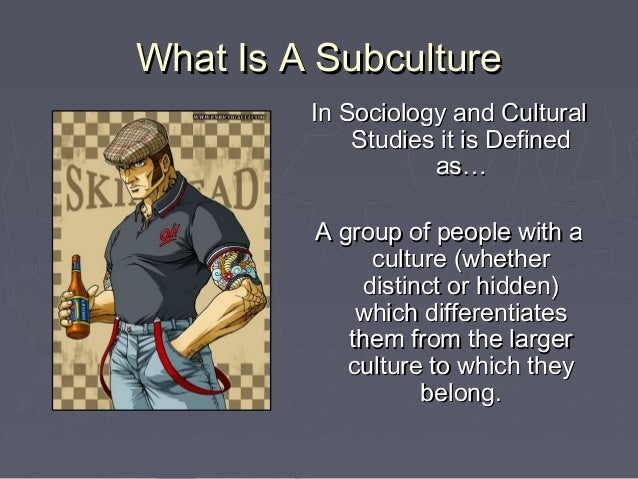 subcultures sociology and chicago school If so, what were the origins of this subcultural style and what was the  this  centre, like the chicago school, was interested in underground.