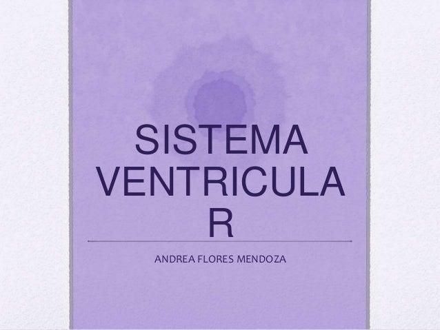 SIST.VENTRICULAR Ventrículos laterales (2) Tercer ventrículo Cuarto ventrículo Conducto ependimario Espacio subaracnoideo