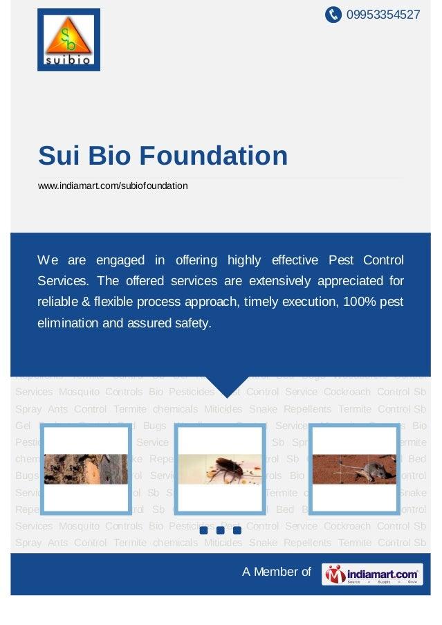 09953354527    Sui Bio Foundation    www.indiamart.com/subiofoundationTermite Control Sb Gel Rodent Control Bed Bugs Woodb...