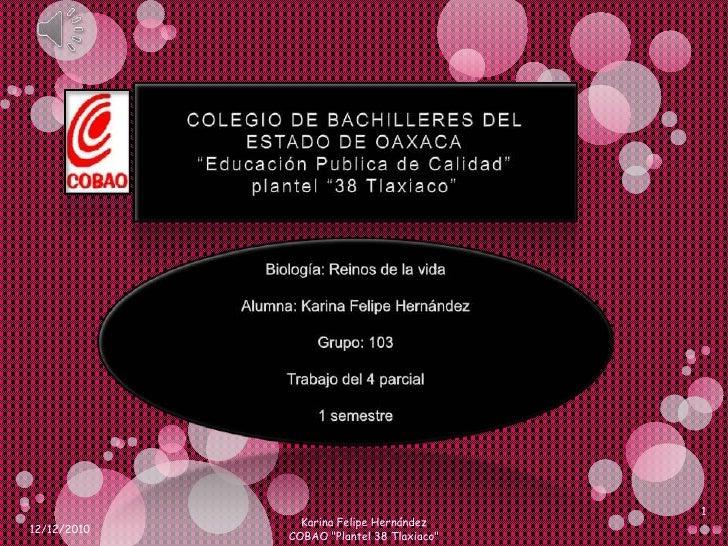 """COLEGIO DE BACHILLERES DEL ESTADO DE OAXACA""""Educación Publica de Calidad""""plantel """"38 Tlaxiaco""""<br />Biología: Reinos de la..."""