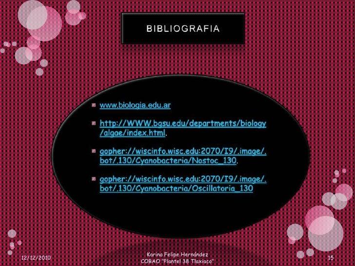 BIBLIOGRAFIA <br />www.biologia.edu.ar<br />http://WWW.bgsu.edu/departments/biology/algae/index.html. <br />gopher://wisci...