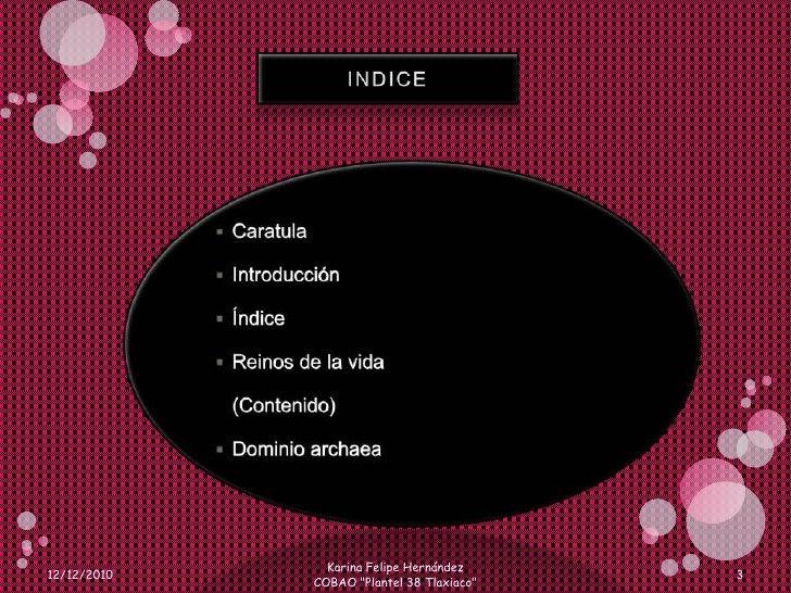 INDICE <br />Caratula <br />Introducción<br />Índice<br />Reinos de la vida<br />(Contenido)<br />Dominio archaea<br />12/...