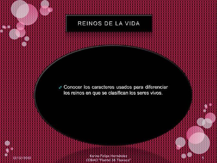 REINOS DE LA VIDA<br />Conocer los caracteres usados para diferenciar los reinos en que se clasifican los seres vivos.<br ...