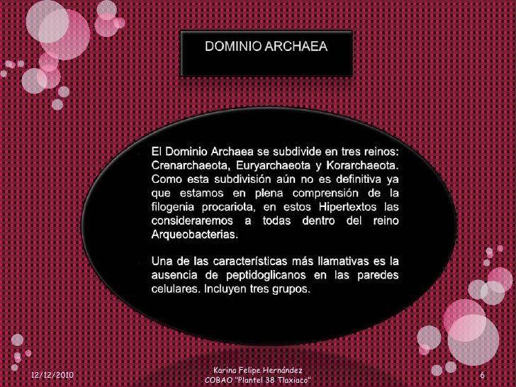 DOMINIO ARCHAEA<br />El Dominio Archaea se subdivide en tres reinos: Crenarchaeota, Euryarchaeota y Korarchaeota. Como est...