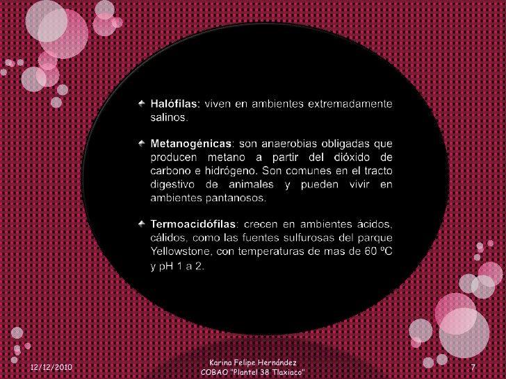 Halófilas: viven en ambientes extremadamente salinos.<br />Metanogénicas: son anaerobias obligadas que producen metano a p...