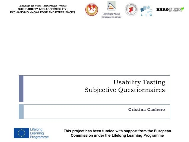 Leonardo da Vinci Partnerships Project GUI USABILITY AND ACCESSIBILITY: EXCHANGING KNOWLEDGE AND EXPERIENCES Usability Tes...
