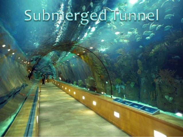 What is this??? ∗ A Submerged Tunnel is a tunnel that  floats in water, supported by  its buoyancy(specifically, by employ...