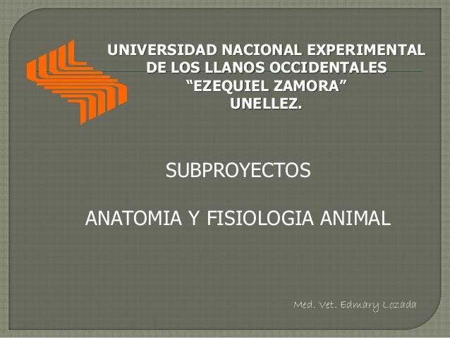 """UNIVERSIDAD NACIONAL EXPERIMENTAL DE LOS LLANOS OCCIDENTALES """"EZEQUIEL ZAMORA"""" UNELLEZ. SUBPROYECTOS ANATOMIA Y FISIOLOGIA..."""