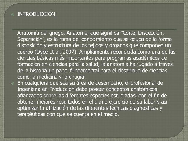 Subproyecto anatomia y fisiologia animal