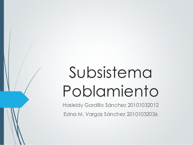 Subsistema  Poblamiento  Hasleidy Gordillo Sánchez 20101032012  Edna M. Vargas Sánchez 20101032036