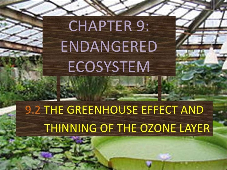 CHAPTER 9: ENDANGERED ECOSYSTEM<br />9.2THE GREENHOUSE EFFECT AND <br />        THINNING OF THE OZONE LAYER<br />