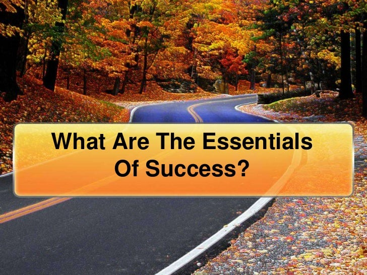 What Are The Essentials     Of Success?