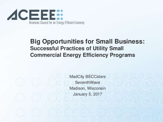 Big Opportunities for Small Business: Successful Practices of Utility Small Commercial Energy Efficiency Programs MadCity ...