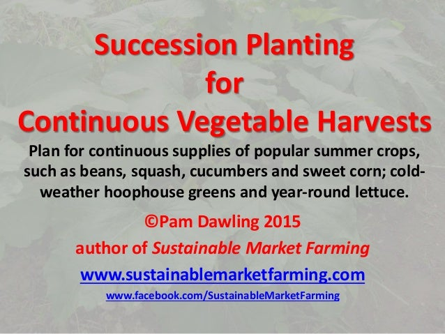 Succession Planting for Continuous Vegetable Harvests Plan for continuous supplies of popular summer crops, such as beans,...
