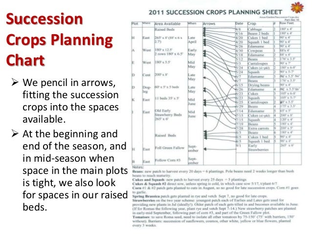 Succession Planting For Continuous Vegetable Harvests 2015 Pam Dawlin