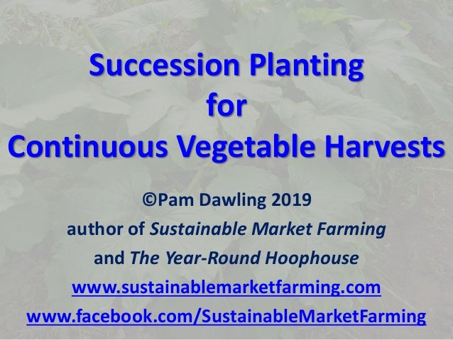 Succession Planting for Continuous Vegetable Harvests ©Pam Dawling 2019 author of Sustainable Market Farming and The Year-...